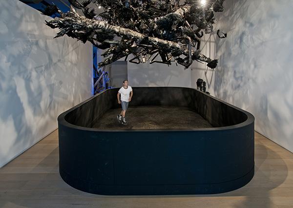 Rink 2015 (installation shot The esker Foundation, Calgary, AB)
